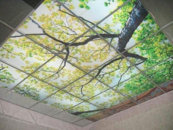 Комбинация фотообоев и сложного многоуровневого потолка из гипсокартона на фото